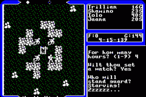 Ultima V: Warriors of Destiny 15