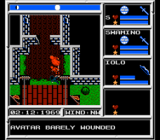 Ultima V: Warriors of Destiny 6