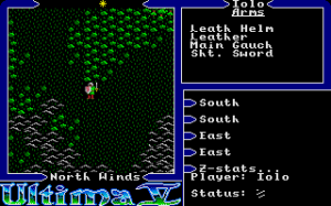 Ultima V: Warriors of Destiny 4