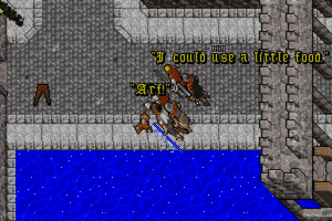 Ultima VII: Part Two - Serpent Isle 12