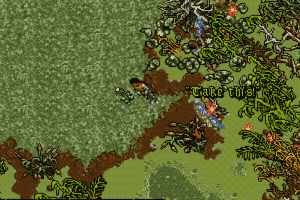 Ultima VII: Part Two - Serpent Isle 15