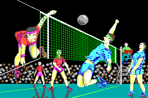 Volleyball Simulator abandonware