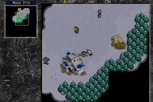 Warcraft II: Tides of Darkness 8