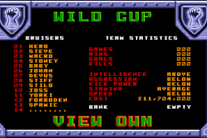 Wild Cup Soccer abandonware