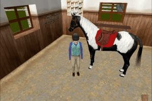 Willowbrook Stables: The Saddle Club 2