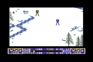 Winter Supersports 92 abandonware