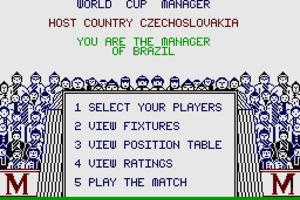 World Cup Soccer 11