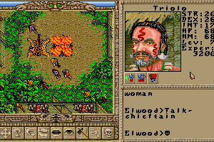Worlds of Ultima: The Savage Empire 1