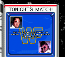 WWF Royal Rumble abandonware