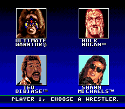 WWF Super WrestleMania 2