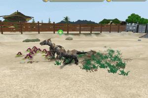 Zoo Tycoon 2 7